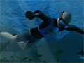 Pearl diver online game