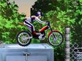 Bike Mania 2 online game