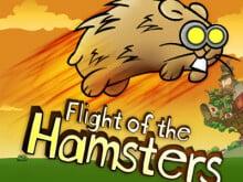Flight of the Hamsters oнлайн-игра