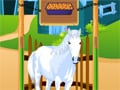 Horse Care Apprenticeships online game