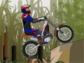Moto Trial Fest 2 online game