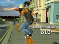Stunt Skateboard 3D online game