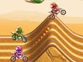 Pro Motocross Racer online hra
