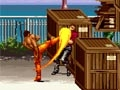 Karate blazers online hra