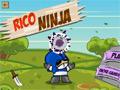 Rico Ninja online hra