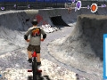BMX Freestyle online hra