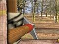 Robin Hood Adventures online hra
