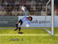 Ragdoll Goalkeeper online game