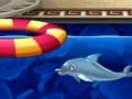 My Dolphin Show 6 online hra