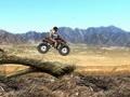 Desert Rider online hra