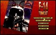 F-14 Tomcat online hra