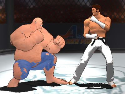 Art of Free Fight online game
