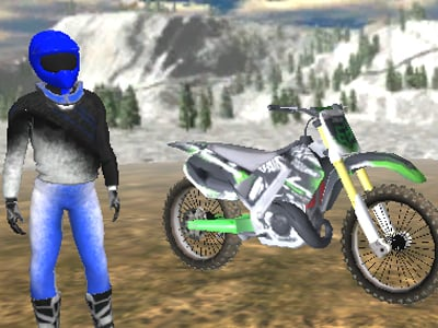 Motorbike Freestyle online game