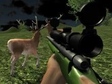 Deer Hunter oнлайн-игра