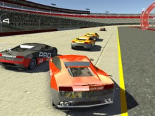 Training Race online game