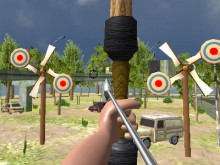 Archery Expert 3D online game