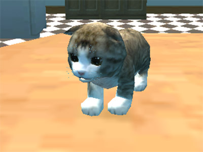 Cat Simulator : Kitty Craft online game