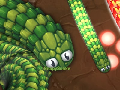 Little Big Snake online game