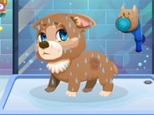 Stray Dog Care online game