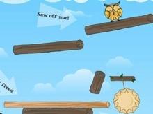 Cute Owl online game