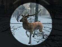 Forest Hunter online game