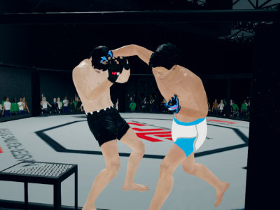 MFS: MMA Fighter online game