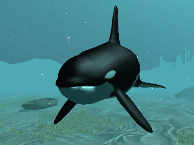Killer Whale online game