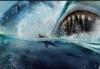 Sharkbait2