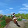 Equestrian18
