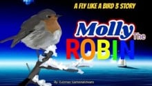 A Fly Like a Bird 3 Story - Molly the Robin - The Fourth Movie - A Crow's Life Sequel