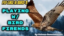 Playing w/ People on Fly Like a Bird 3